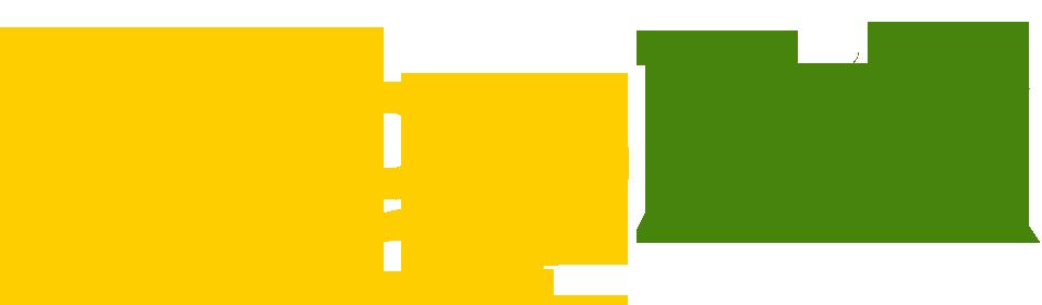 Togozik